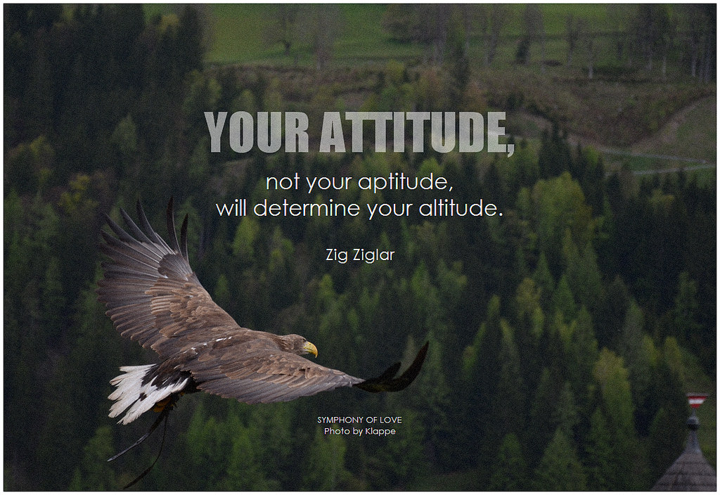 The Other Side of Bad Attitude