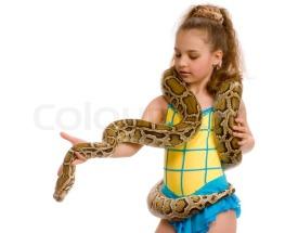 Yellow Python and Girl